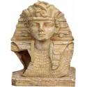 Αιγύπτιος Tουκαμόν ενυδρείου 13.5 x 12 x 20cm